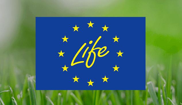Programa LIFE apoia futuro verde